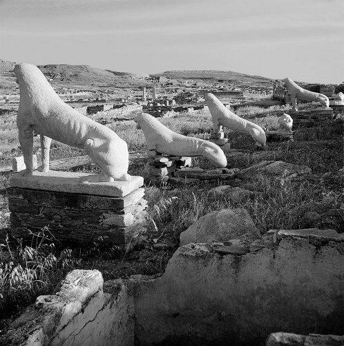 Αρχαϊκά λιοντάρια στο άνδηρο των λεόντων. Δήλος, 1950-1955 Βούλα Θεοχάρη Παπαϊωάννου